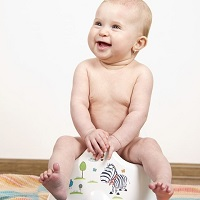 Image: Potty Training products - Stock Photo Credit: Christophe Libert - mordoc (http://www.freeimages.com/photographer/mordoc-41072) Some Rights Reserved